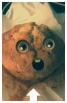 muffins6_phone